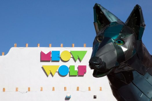 MeowWolf_DSC_0009-1080x720